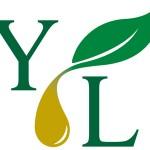 Where Can I Buy High Quality Essential Oils?