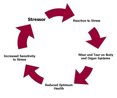 chronic-stress-diagram.jpg