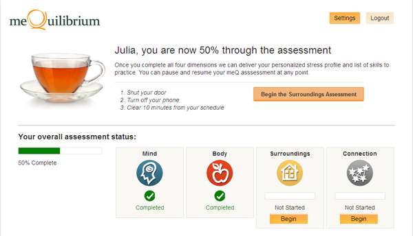 meQ Assessment Screenshot
