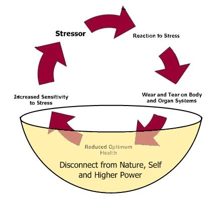 Diagram of natural stress management cycle