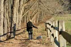 Woman taking a relaxing nature walk